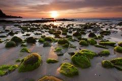 Mossy βράχοι σε μια παραλία σε Kudat, Sabah, ανατολική Μαλαισία Στοκ Εικόνες