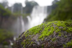 Mossy βράχοι στις πτώσεις Στοκ Εικόνες