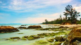 Mossy παραλία του Μπόρνεο βράχου Στοκ Εικόνες