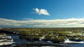 Mossy πεδίο λάβας στοκ φωτογραφίες με δικαίωμα ελεύθερης χρήσης