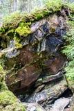 Mossy σύσταση βράχου στοκ φωτογραφία με δικαίωμα ελεύθερης χρήσης