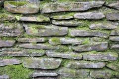mossy τοίχος πετρών Στοκ Φωτογραφίες