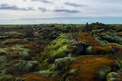 Mossy τομέας λάβας στην Ισλανδία Στοκ φωτογραφίες με δικαίωμα ελεύθερης χρήσης
