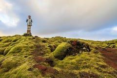 Mossy τοπίο Ισλανδία Στοκ Εικόνες