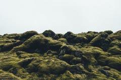 Mossy τοπίο στην Ισλανδία Στοκ εικόνα με δικαίωμα ελεύθερης χρήσης