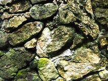 Mossy τραχιά σύσταση φωτογραφιών κινηματογραφήσεων σε πρώτο πλάνο τοίχων πετρών Αγροτικός τοίχος πετρών του αρχαίου κτηρίου Στοκ Εικόνες