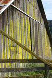 Mossy barn wall. Barn that is full of a very pretty yellow moss color royalty free stock photos