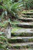 Mossy Birdhouse on Mossy Stone Steps Stock Photo