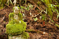 Mossy bodhisattva statue Royalty Free Stock Image