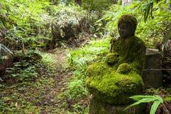Mossy bodhisattva statue Stock Image