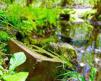 Mossy bricks by a stream Royalty Free Stock Photos