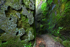 Mossy canyon in Alabama. A mossy narrow corridor through giant rocks in Alabama Stock Photos