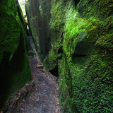 Mossy canyon in Alabama Stock Photos