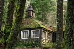 Mossy Country Stone Cottage in the Woods. Country Stone Cabin or Cottage in the woods surrounded by trees, Steeple Box on Roof, Window panes, Moss on roof and Royalty Free Stock Photography