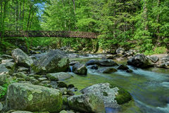 Mossy creek cascade Stock Images