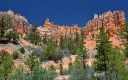 Mossy creek trail hoodoos, bryce canyon national park, utah, usa Stock Photography