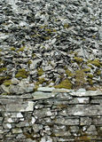 Mossy dry stone wall Stock Photography