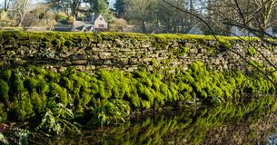 Mossy dry stone wall reflecting on water, Bibury, royalty free stock photos