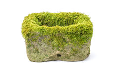 Mossy flower trough made of sandstone Royalty Free Stock Images