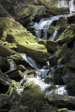 Mossy Forest Waterfall Stock Photo