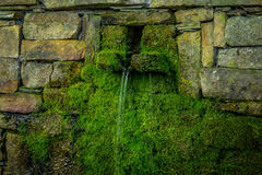 Mossy Fountain. A moss covered stone fountain Royalty Free Stock Photography