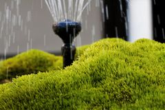 Mossy fountaion Royalty Free Stock Image