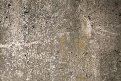 Mossy gray rough concrete wall texture. Mossy aged shabby gray rough concrete wall texture background Stock Images