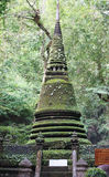 Mossy green pagoda Royalty Free Stock Image