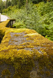 Mossy Guardrail. A guardrail on a bridge over a river covered with thick green moss Stock Photo