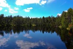 Mossy lake Royalty Free Stock Photo