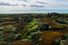 Mossy lava field in iceland. Mossy lava field is located near Vik in south Iceland Royalty Free Stock Photos