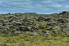 Mossy Lava Stone Field In Iceland On A Summer Day Stock Photo