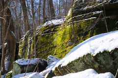 Mossy ledges Royalty Free Stock Photography