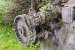 Mossy machinery Stock Image