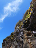 Mossy Oceanside Cliff. An Oceanside cliff is streaked with running water and moss Royalty Free Stock Photo