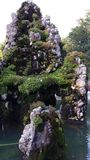 mossy rock Royaltyfria Bilder