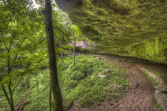 Mossy rock formation, Kentucky forest Stock Photo