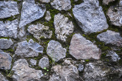 Mossy rock texture Stock Photography