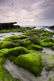 Mossy rocks at a beach in Kudat, Sabah, East Malaysia Stock Photography