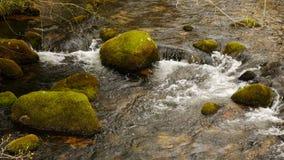 Mossy Rocks in Dartmoor River. Mossy green rocks in a river on Dartmoor, Devon, England stock photos