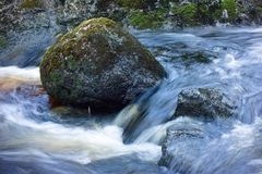 Mossy rocks in a rushing stream royalty free stock image