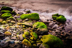 Mossy Rocks On Shoreline. Highly detailed mossy rocks on shoreline and soft sea waves in the sunset time on the Marmara region of the country Turkey Royalty Free Stock Photo