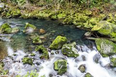 Mossy rocks at a stream in Oregon`s famous Columbia River Gorge. Pacific Northwest. A creek in motion, Oregon`s famous Columbia River Gorge. Pacific Northwest stock photography