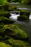 mossy rocksvatten Arkivfoto