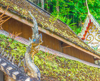 Mossy roof Royalty Free Stock Photos