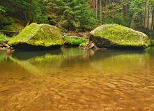 Mossy sandstone boulders in water of mountain river. Royalty Free Stock Photos