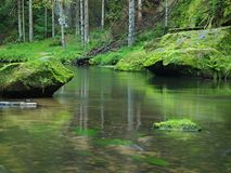 Mossy sandstone boulders in water of mountain river. Clear blurred water with reflections. Stock Photo