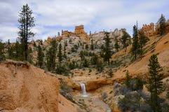 mossy sceniskt för grotta Royaltyfria Bilder