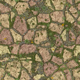 Mossy sidewalk royalty free stock images