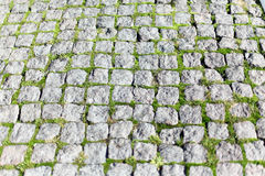 Square stone pavers Stock Image